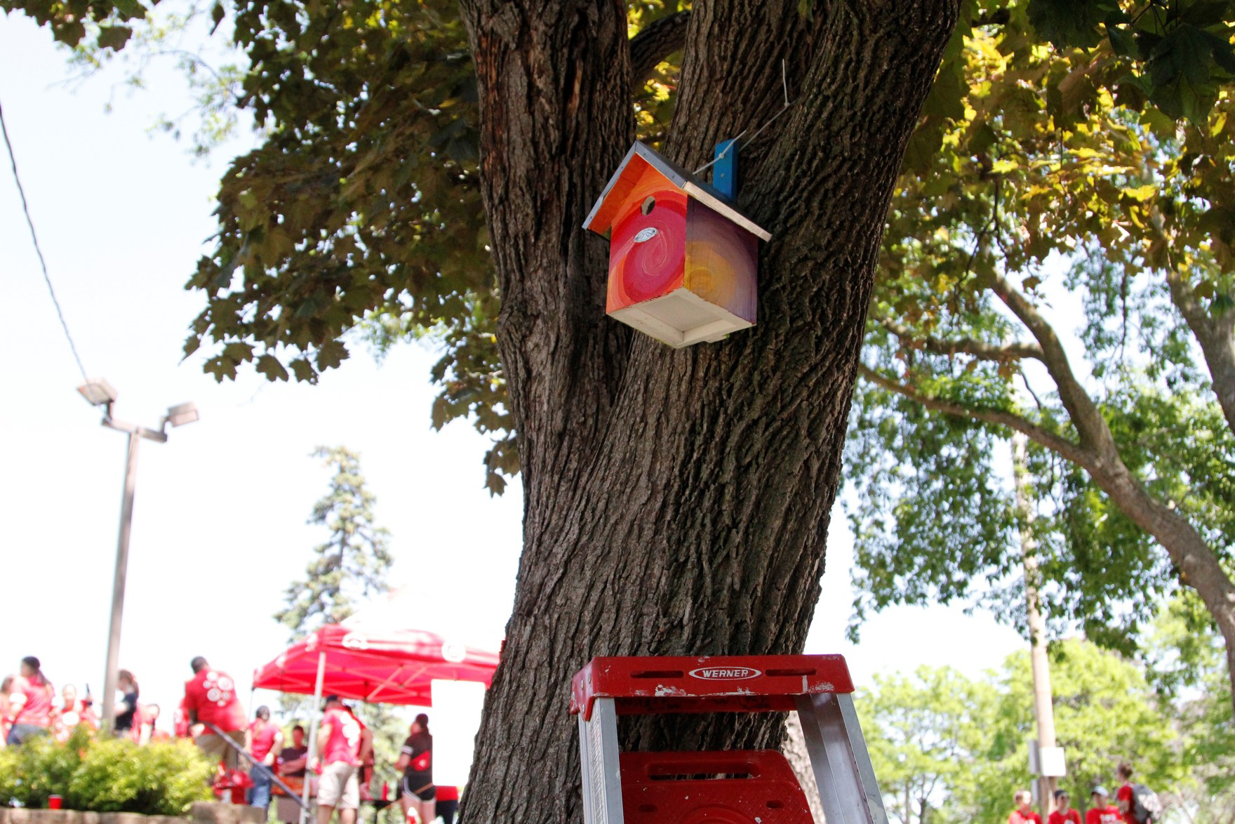 Birdhouses painted by volunteers at Wilder Center for Social Healing
